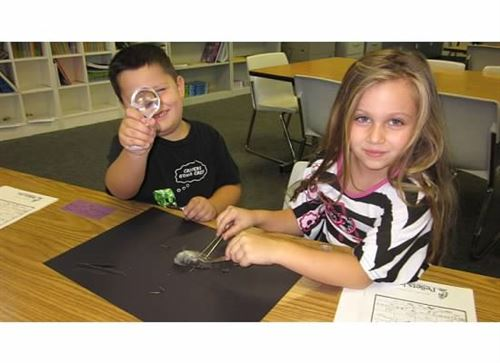 students examining contents of an owl pellet with tweezers and magnifying glass
